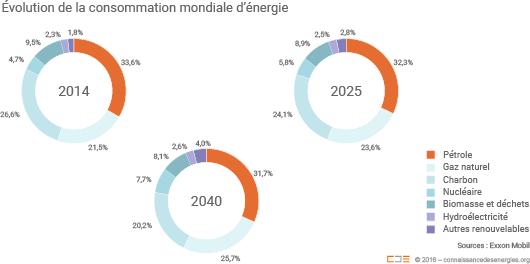 Évolution de la consommation d'énergie primaire dans le monde