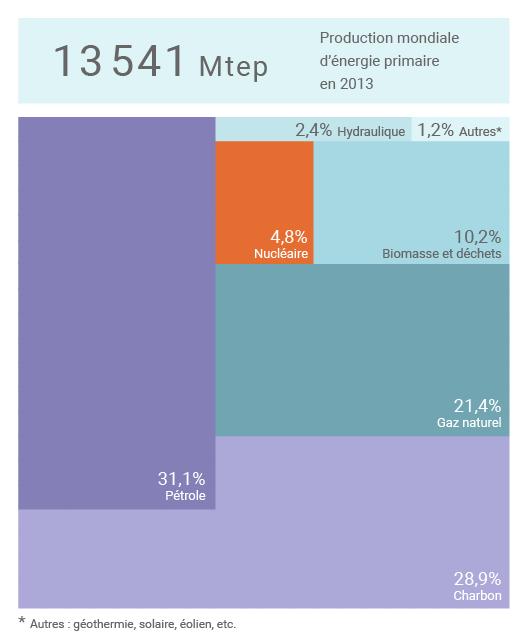 Mix énergétique mondial en 2013 (©Connaissance des Énergies)