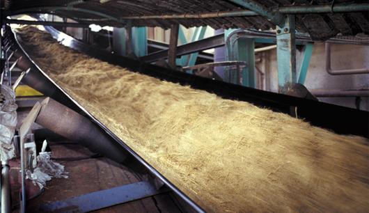 Bagasse exploitée dans l'usine du Gol (©Syndicat du sucre de la Réunion)