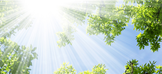 Les réserves gazeuses du soleil se comptant en milliards d'années de fusion, l'énergie solaire est, à l'échelle de l'homme, illimitée. Elle est classée parmi les énergies renouvelables. (©DR)