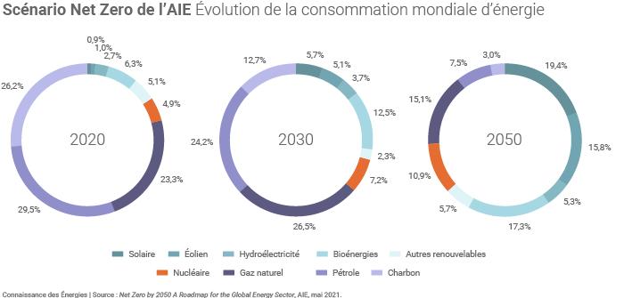 Evolution du mix énergétique dans le scénario Net Zero de l'AIE