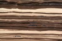 Coupe de schiste bitumineux, roche sédimentaire contenant du kérogène pouvant fournir du gaz de schiste et de l'huile de schiste (©2011)