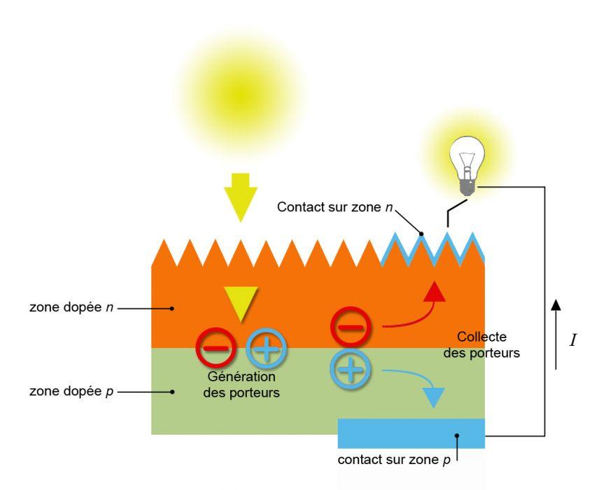 Fonctionnement cellule photovoltaique organique