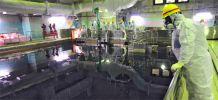AIEA nucléaire