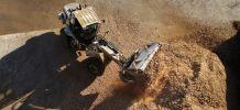Biomasse : la plus puissance centrale de cogénération